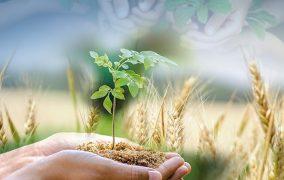 الدكتور حسّـان مخلوف يعد خطة مواجهة زراعية لحماية لبنان من المجاعة ولدعم الأقتصاد الوطني